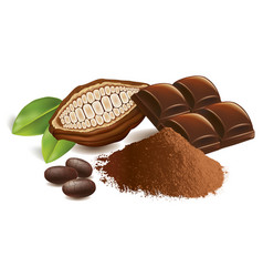 cacao beans with chocolate table and powder vector image