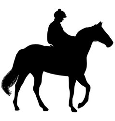 racehorse and jockey silhouette vector image