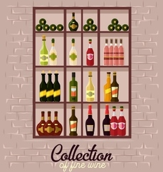 Shelves with wine bottles vector