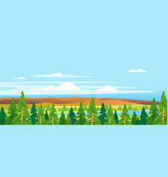 Spruce tops forest landscape background vector