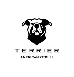American pit bull pitbull terrier logo icon vector