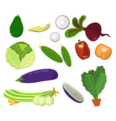 avocado and beetroot set vector image
