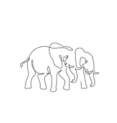couple elephants walking one line art drawing vector image