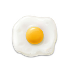 fried egg isolated realistic 3d icon vector image