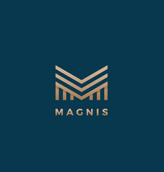 magnis abstract geometry minimal sign vector image