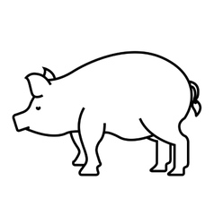 pig farm isolated icon design vector image