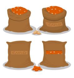 sacks with natural food vector image