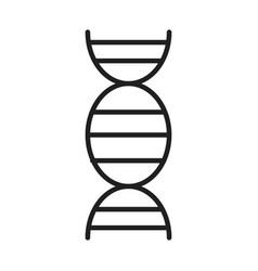 science molecule dna healthcare medical and vector image