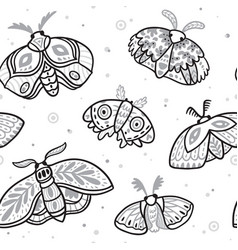 seamless pattern with hand drawn moths vector image