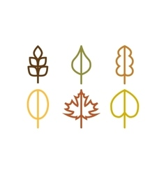 Thin line autumn tree leaf icons vector image