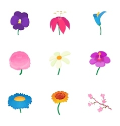 Types of flowers icons set cartoon style vector