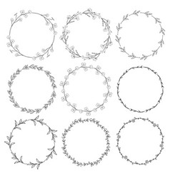 Wreaths branches laurels with herbs plants vector
