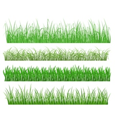 green grass and plant elements vector image