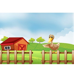 A duck at the farm vector