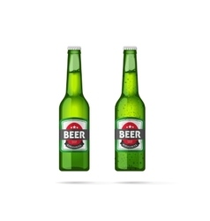 Beer bottles isolated vector