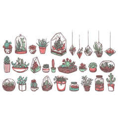 desert cacti and succulents hand drawn stickers vector image