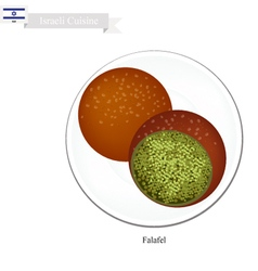Falafel or israeli deep fried ball of chickpeas vector