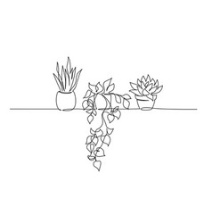 house plants in pots continuous one line drawing vector image