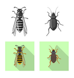 insect and fly symbol vector image