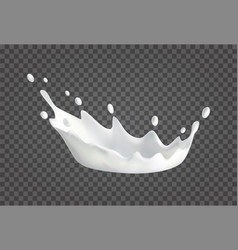 Milk splash realistic vector