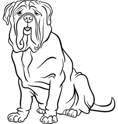neapolitan mastiff dog cartoon for coloring vector image vector image