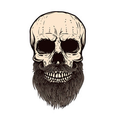 Bearded skull on white background design element vector
