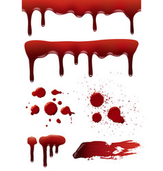blood drops horror death symbols bloody splashes vector image