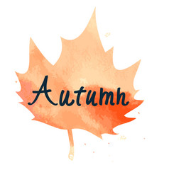 orange maple leaf with hand written sign autumn vector image