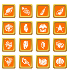 tropical sea shell icons set orange square vector image