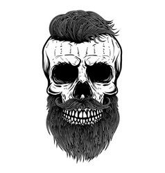 bearded skull design element for poster emblem t vector image