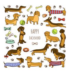 set of dog dachshund vector image