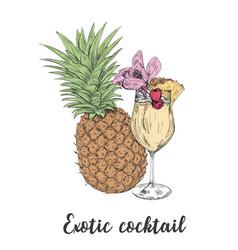 cocktail sketch pineapple sketch cocktails vector image vector image
