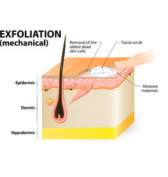 Exfoliation mechanical vector image vector image