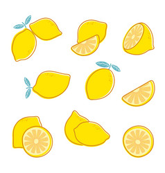 cut lemon fresh citrus fruit lemon slice and vector image