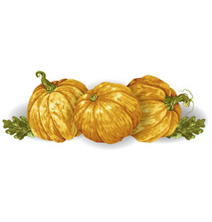 Decorative element in with pumpkins and autumn vector