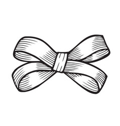 Sketch bow with ribbon vector