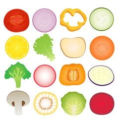 Vegetables Slice Set vector