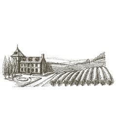 vineyard logo design template village or vector image vector image