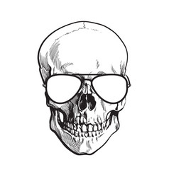 hand drawn human skull wearing black and white vector image
