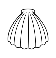 Scallop seashell vector image vector image
