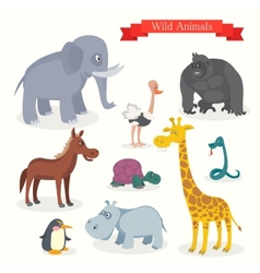 Animal cartoons safari wild nature vector