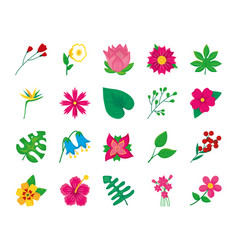 Anthurium leaf and colorful flowers icon set vector