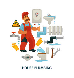 house plumbing promotional poster with plumber vector image