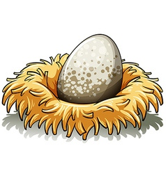 Nest with an egg vector