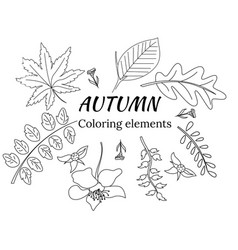 Set of leaves in doodle for coloring books vector
