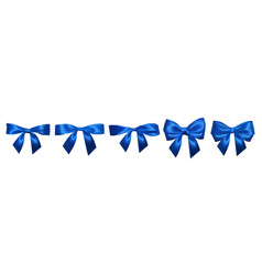 set of realistic blue bows element for decoration vector image