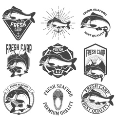 Set of the fresh carp labels emblems and design vector