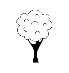 silhouette nature tree with trunk and branch vector image