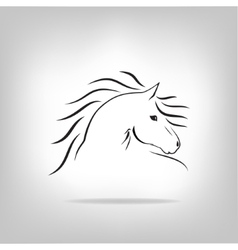 image of a horse vector image