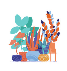 decorative set of house plants in bright colors vector image
